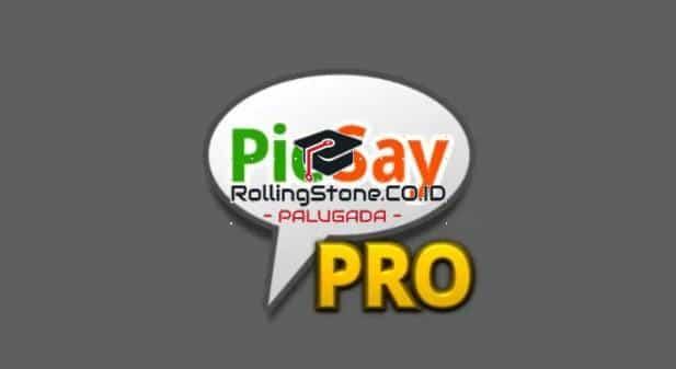 picsay-pro