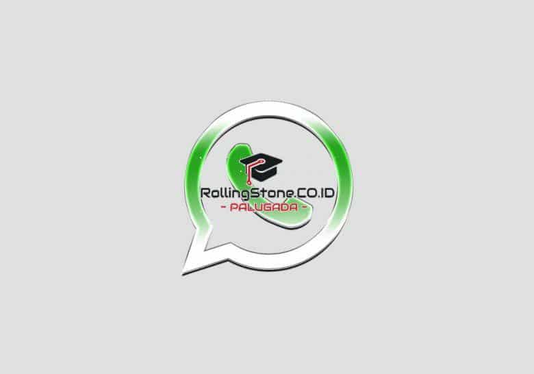 Apa-Itu-WhatsApp-Transparan