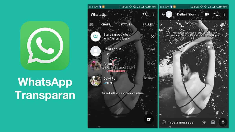 Cara-Install-Whatsapp-Transparan