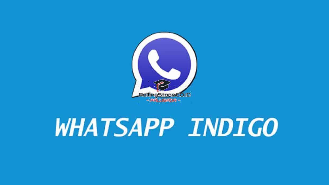 Review-WhatsApp-Indigo